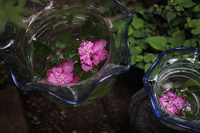 金魚鉢-花